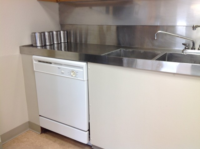Kitchen - sink and dishwasher